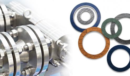 Juntas planas de Seals and Rubber Technology